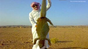 saudi-sold-extinct-dinosaur-to-american-for-7m